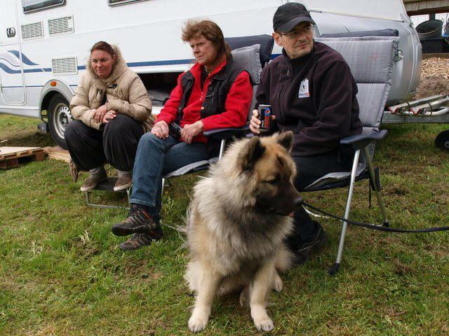 familiedage-fyn-2012-2013-7942