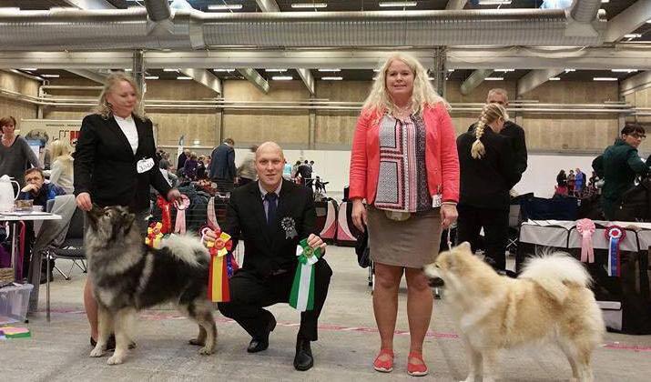 herning-vinder-soendag