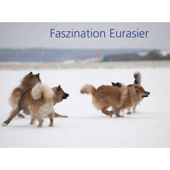 faszinationeuraser1